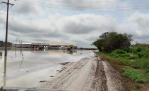 Lluvias en el oriente de Yucatán dejan inundaciones y caída de árbole