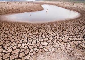 Agoniza el campo tras escasez de agua en Ocampo