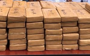 Decomisan en Costa Rica cocaína en contenedor con banano que iba a Alemania