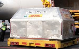 Arriba a México cargamento de 585 mil vacunas antiCOVID-19 de Pfizer