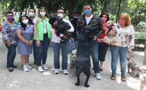 Anuncia Romo agenda de Bienestar Animal para Miguel Hidalgo