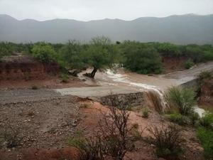 Beneficia lluvia solo a cinco de los 24 ejidos de Castaños