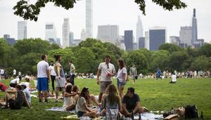 Nueva York hará un megaconcierto en Central Park