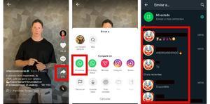 Cómo compartir un video de TikTok en los estados de WhatsApp