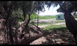 Las áreas de esparcimiento de la Región Centro estarán vigiladas