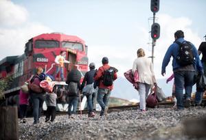 Más de 30 migrantes denuncian robos y agresiones en Saltillo