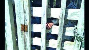 Agentes del INM y GN fueron liberados en 'El Chikle'