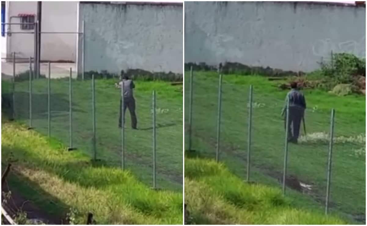 VIDEO: Un sujeto es buscado por dispararle con escopeta a perrito en Tultepec