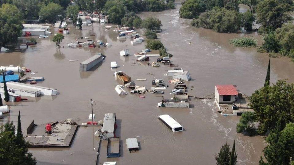 Inundación en Tula también afectó a los animales