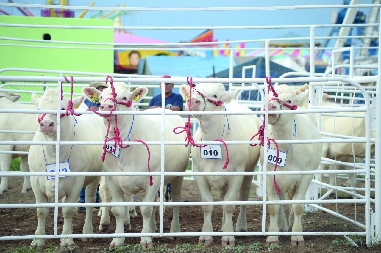 Hay interés comercial de Canadá por productos agropecuarios de Coahuila