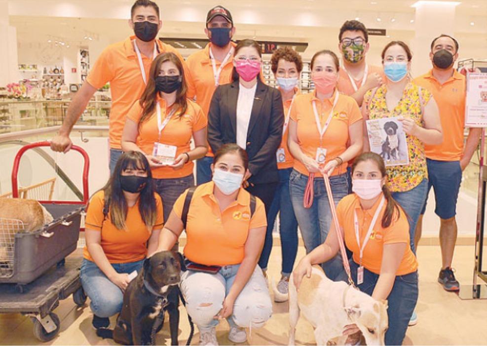 Fundación MILMA rescata cinco mil perros callejeros en Monclova