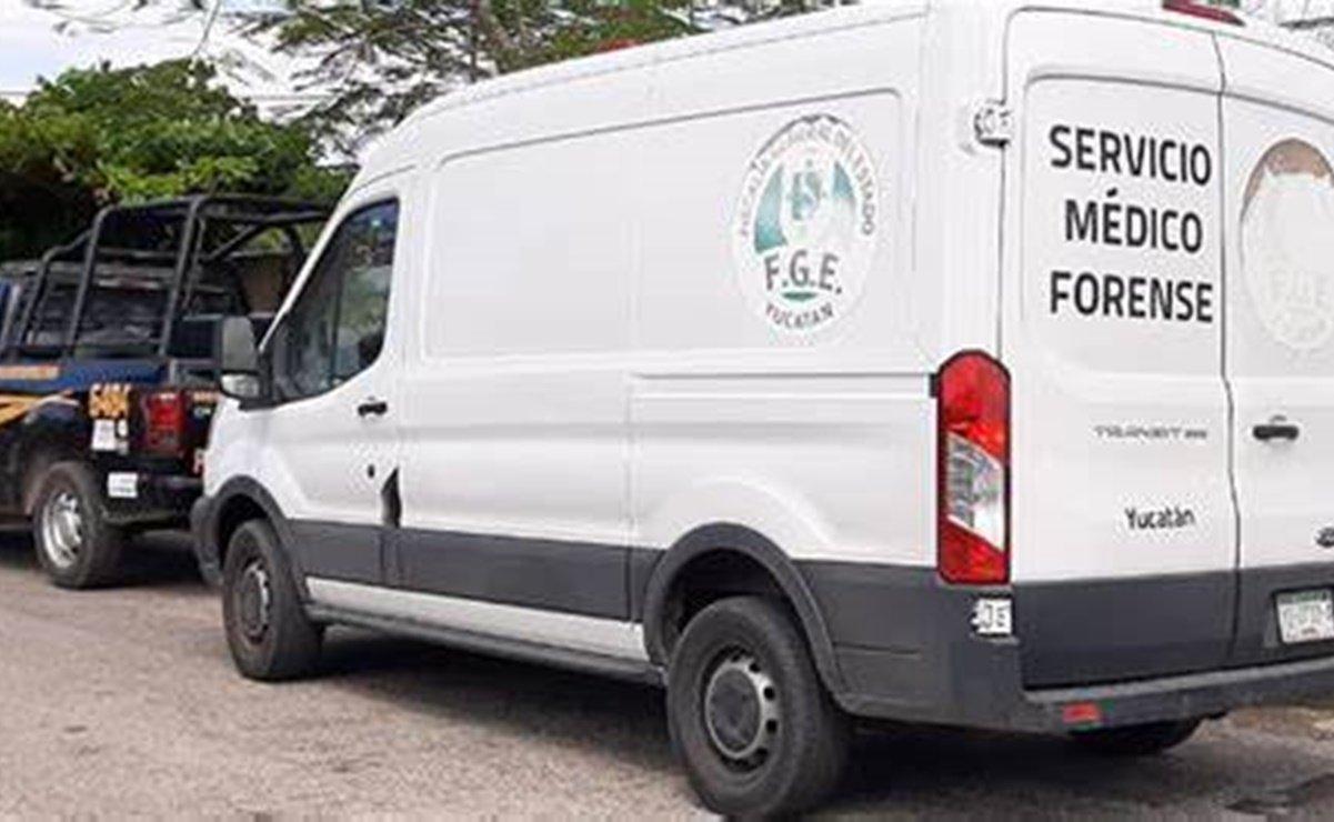 Hombre se suicida junto a sus 13 perros en Yucatán