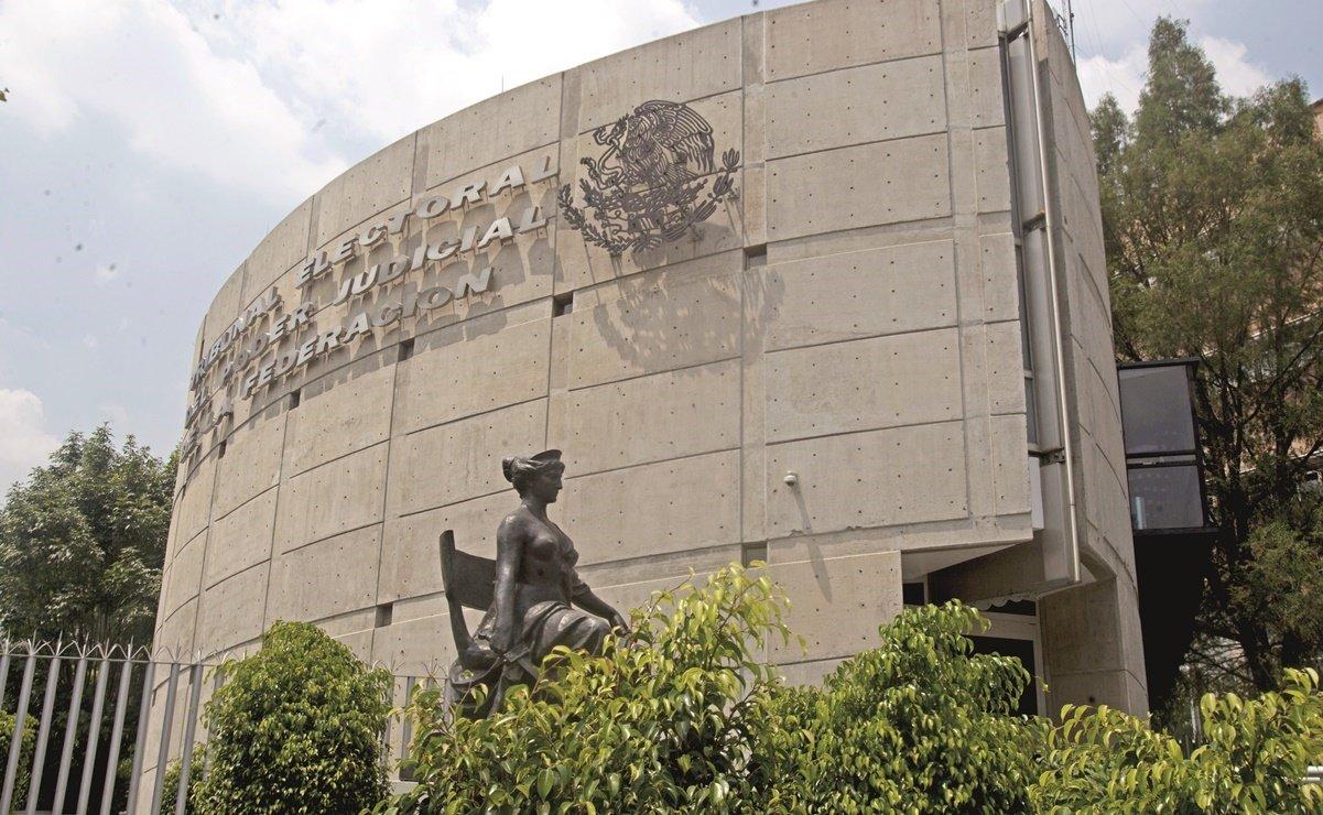 Tribunal Electoral anuncia tres nuevos nombramientos