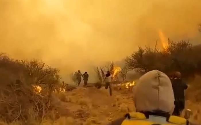 Incendios forestales arrasan miles de hectáreas en el centro de Argentina