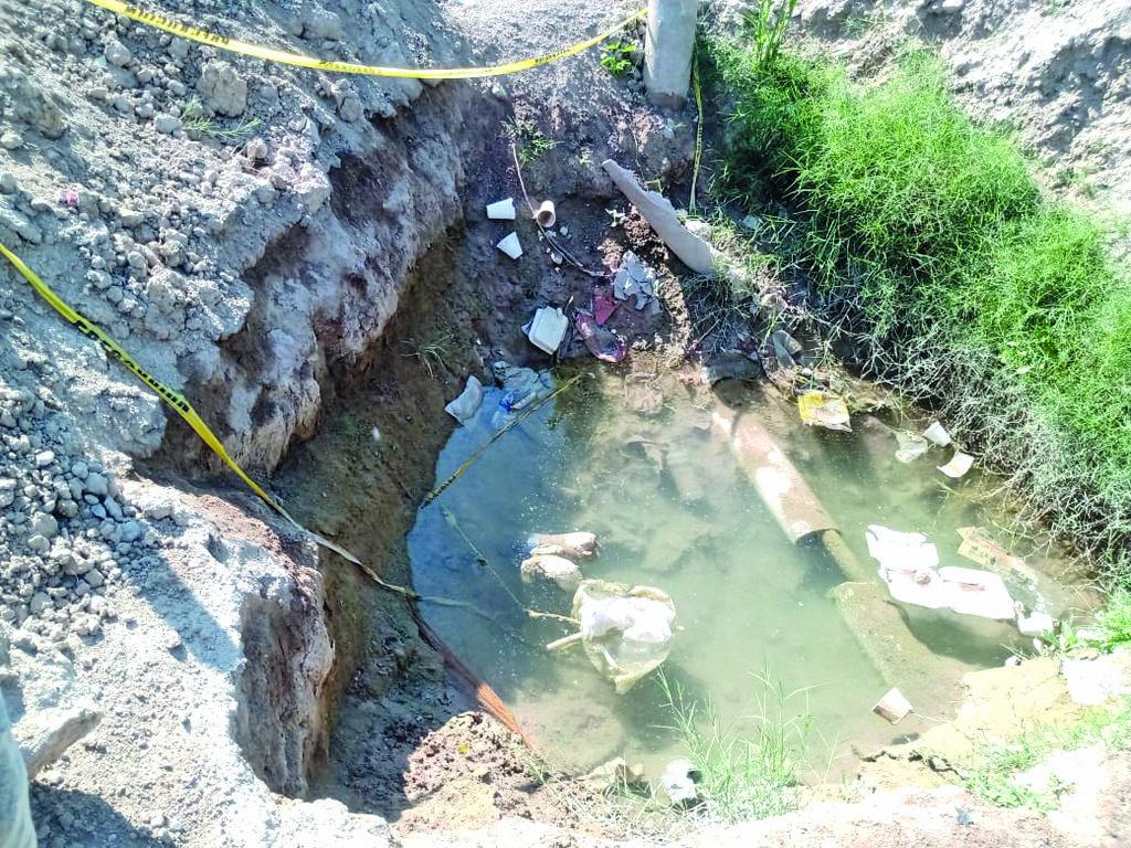 El avistamiento de víboras continúa en la colonia Las Moritas de Monclova