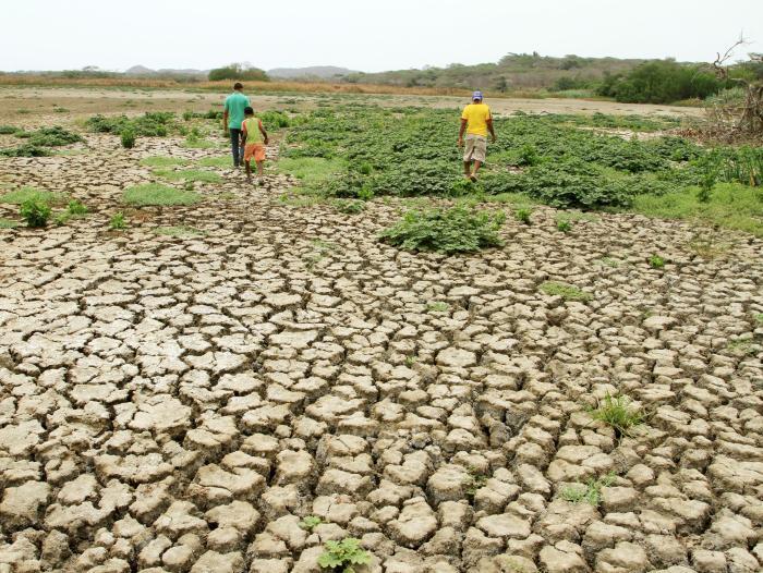 Fondo Verde otorga 174.3 millones de dólares a Corredor Seco Centroamericano