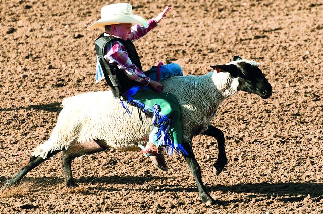 'Monclova de Roll' prepara rodeo infantil con animales de granja