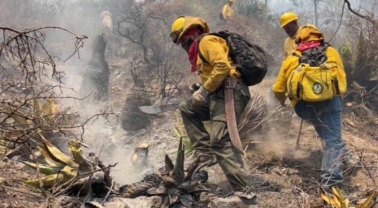 Empresas de Monclova participan con Encuentro de Brigadas Contra Incendios