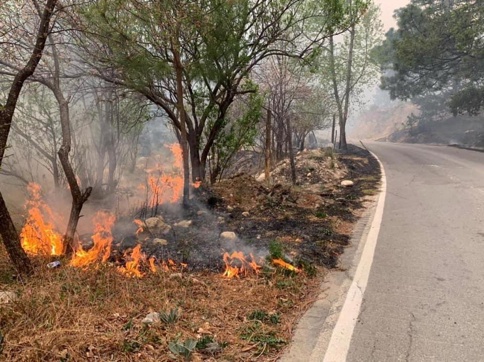 Incendio en la Sierra de Arteaga